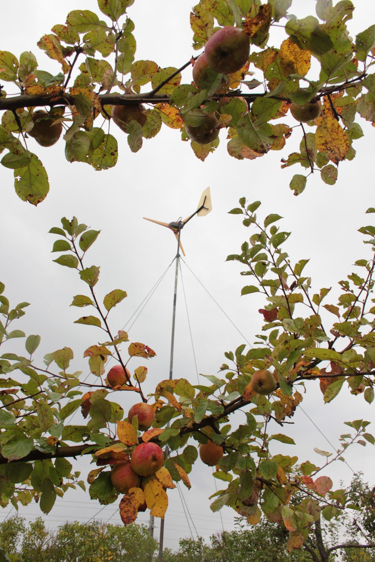 Windradselbstbau