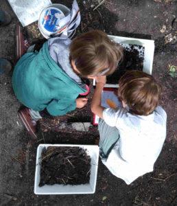 zwei kinder von oben, schauen in eine schale erde und suchen etwas (Tiere)